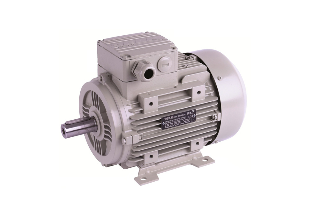 Elk Electric Motors